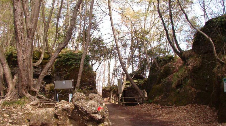 Parco Naturale di Portofino