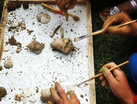 Laboratorio didattico per bambini nel Museo Paleontologico Silvio Lai